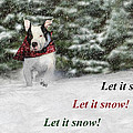 Shelley Neff - Let it Snow