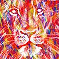 Lindsey Moulton - Lion Version 1