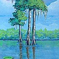 Suzanne Theis - Louisiana Cypress