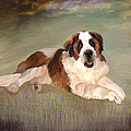 Angela A Stanton - Mac the St. Bernard