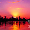 Geoff Childs - Magenta Sunrise over...