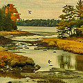 Cathy Kovarik - Maine Wetlands