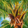 Shelia Kempf - Majestic Palm