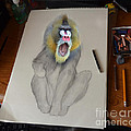 Jim Fitzpatrick - Mandrill Drawing Coming...