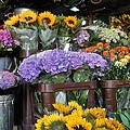 Kay Gilley - Market Flowers