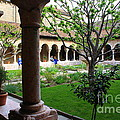 Photographic Art and Design by Dora Sofia Caputo - Medieval Garden at The...