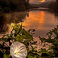 Robert Charity - Meramec River At...