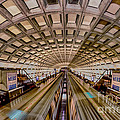 Jerry Fornarotto - Metro No 1 hdr