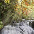 Debra and Dave Vanderlaan - Misty Falls at Coker...