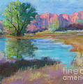 Rosemary Juskevich - Moab Reflection