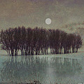 R christopher Vest - Moonrise At Icy Pond