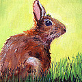 Nancy Merkle - Morning Bunny
