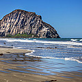 David Millenheft - Morro Rock