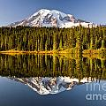 Michael Russell - Mount Rainier from...