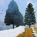 R christopher Vest - Mountain Road With...