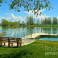 Photography Moments - Sandi - Murtaugh Lake - Spring...