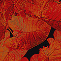 Ann Powell - nature - art- Leaves in...