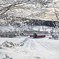 Bill  Wakeley - New England Winter Farms...