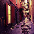 Vivienne Gucwa - New York City Alley