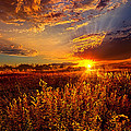 Phil Koch - Not Thinking About...