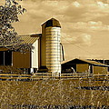 Robert Harmon - Ohio Farm in Sepia