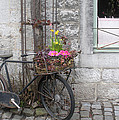 Andrea Rea - Old Bicycle in Belgium