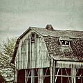 Birgit Tyrrell - Old Broken Barn