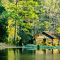 Parker Cunningham - Old Cabin By The Pond