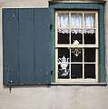 Agrofilms Photography - Old Style Window