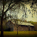 Carla Parris - Old Tobacco Barn