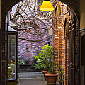Ben and Raisa Gertsberg - Old Town Courtyard In...