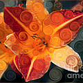 Omaste Witkowski - Orange Lily Abstract...