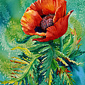 Karen Mattson - Orange Oriental Poppy