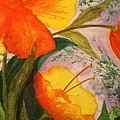 Laura R OKelly - Orange Poppies