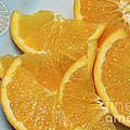 Andee Photography - Orange Slices 2