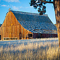 Inge Johnsson - Oregon Barn