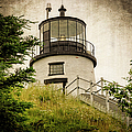 Joan Carroll - Owls Head Lighthouse