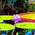 Annie Zeno - Painterly Water Lily