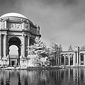 Bill Gallagher - Palace of Fine Arts