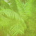 Marianne Campolongo - Palm leaves botanical...