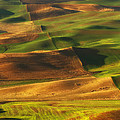 Reflective Moments  Photography and Digital Art Images - Palouse Morning