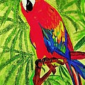 Renee Michelle Wenker - Parrot in Paradise