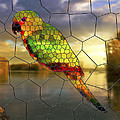 Georgeta Blanaru - Parrot Stained Glass...
