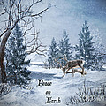 Lianne Schneider - Peace On Earth