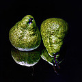 Geoffrey Coelho - Pears Reflected - Still...