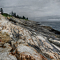 Joan Carroll - Pemaquid Light