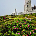 Karol  Livote - Pemaquid Point