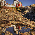 Priscilla Burgers - Pemaquid Point Light
