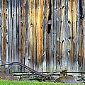 Kathy Barney - Plow and Barn Study 2