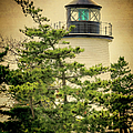 Joan Carroll - Plum Island Light
